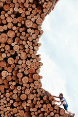Young man climbing the large pile of cut wooden logs