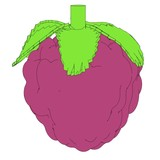 cartoon image raspberry fruit