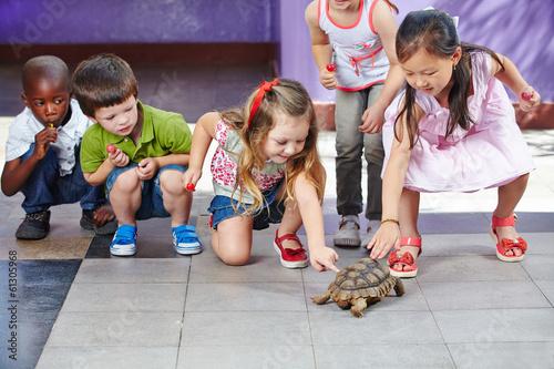 canvas print picture Kinder im Kindergarten streicheln Schildkröte