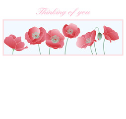 Thinking of you Card Poppies