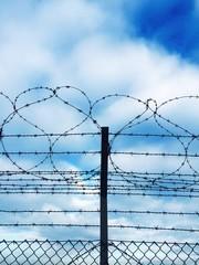 recinzione di filo spinato