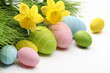 Easter eggs and Fresh Green Grass