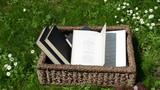 Books in wicker basket and wind thumb book pages in park