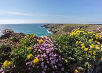 South west coast path near Bedruthan Cornwall Uk
