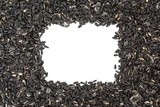 sunflower seeds with white rectangle copy space