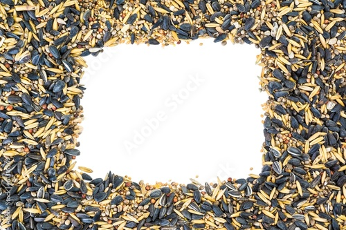 Mixed bird seeds with white rectangle copy space