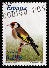 Postage stamp Spain 2006 European Goldfinch, Passerine Bird