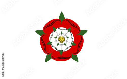 tudor dynasty rose