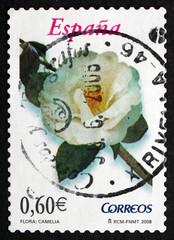 Postage stamp Spain 2008 Camellia, Flowering Plant