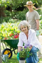 Mature woman engaged in gardening with man in background