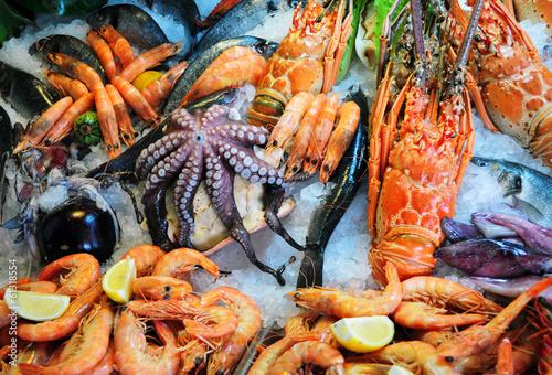 Fruits de mer frais Poster