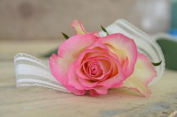 Einzelne Rose mit Schleifenband