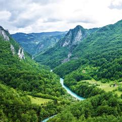 Mountain river Tara, Durmitor, Montenegro