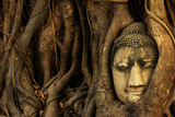 head of sandstone buddha tree roots covered at Wat Mahathat, Ayu