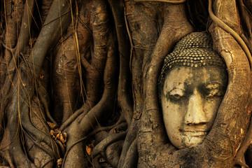 head of sandstone buddha tree roots covered at Wat Mahathat, Ayu