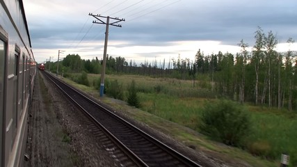 View of the taiga from the passenger train window.
