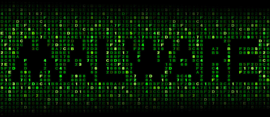 Malware text on hex code illustration