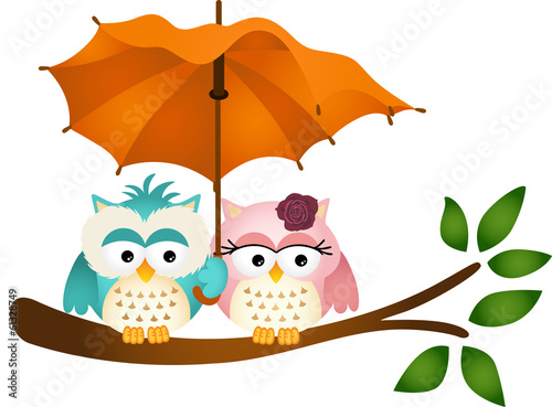 Owls under umbrella