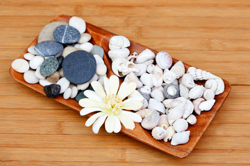 Tray decorated with river stones and shells