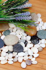 River rocks with lavender flowers