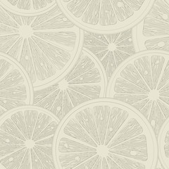 Citrus sketch