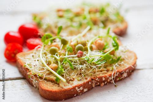Healthy vegetarian sandwich with whole grain bread,alfalfa,hummu