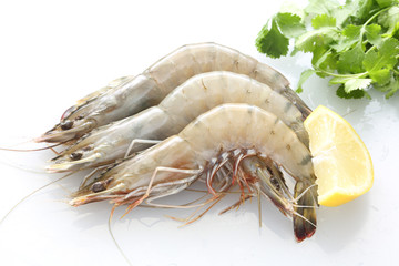 Top view of Fresh Gulf Shrimps