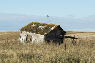 Old Farmhouse on the Prairie