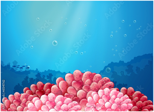Pink corals under the sea