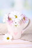 Beautiful chrysanthemum flowers in cup