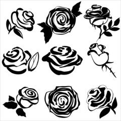 Black silhouette of rose  set symbols vector illustration