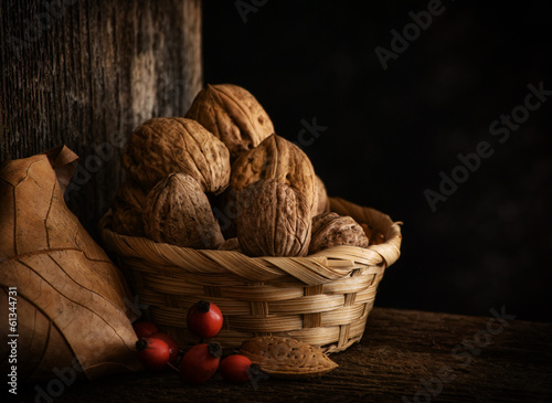 Still Life with Walnut, Leaf and Rosehip.