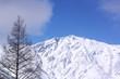 雪をかぶった山の頂