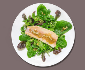smoked trout  whit Salad of spinach,onion sauce, isolated