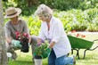 Couple engaged in gardening