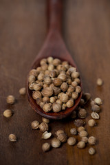 dried coriander in a wooden spoon, close-up, selective focus