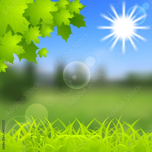 Spring and summer background. Gradient mesh