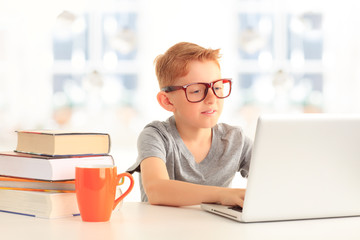 Elementary school student looking at computer