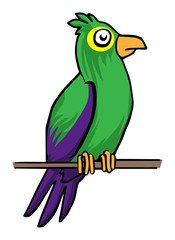 Colorful parrot, vector illustration