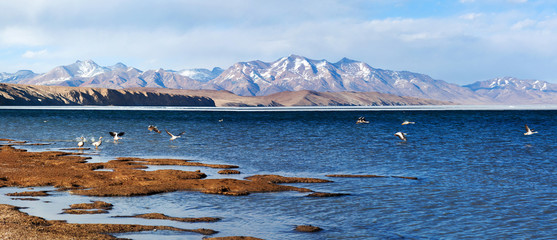 Panorama of Lake Manasarovar in Western Tibet