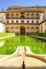 landscape in Alhambra, courtyard with green water
