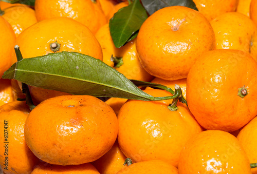 tasty tangerines as background