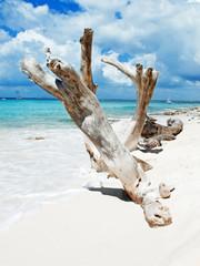 tropical beach in Dominican republic. Caribbean sea. Island Kata