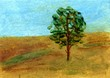A solitary tree on the field
