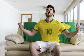 Brazilian supporter celebrates