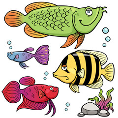 Vector illustration of Aquarium fishes collection