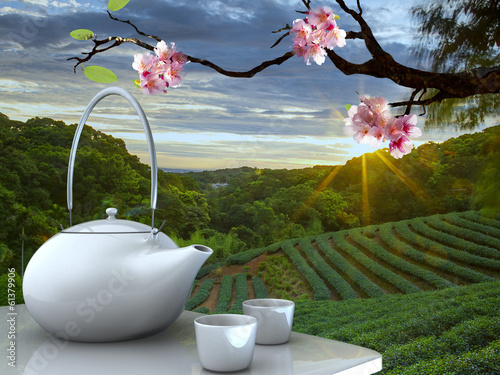 tea pot with nice background