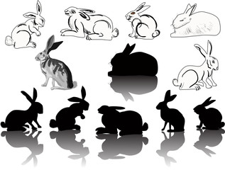 twelve hare and rabbit silhouettes on white
