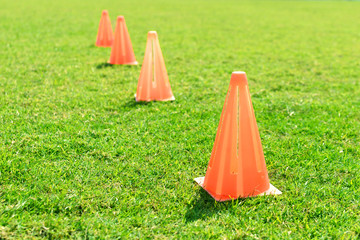 Soccer cone standing on grass.