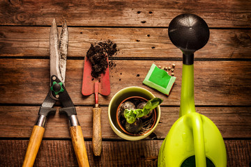 Gardening tools on vintage wooden table - spring